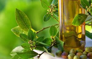 Bottle of olive oil and olives, המלצה של רות, לייף סטייל מגזין,