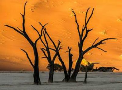 MAMA AFRICA מסע אל יבשת אפריקה- תערוכת צילומים דקומנטרית, 106il תערוכות חדשות, צילום: גיל גופר