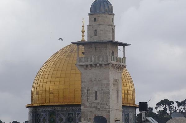 התגלית, ירושלים,צילום 106il ישראל לייף סטייל מגזין תירות