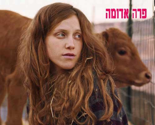 סרט ישראלי פרה אדומה